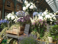 Flowers in Covent Garden
