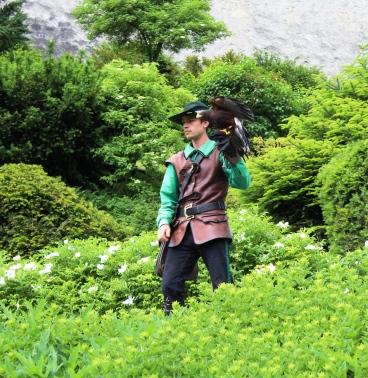 Greifvogelshow auf Hohenwerfen